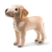 Kristopher Labrador 32 beige