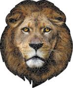 Shape Puzzle Löwe 550 Teile